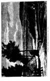 Graphic Saturday 24 September 1870 Page 8