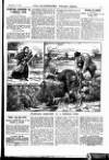 Illustrated Police News Saturday 05 February 1910 Page 13