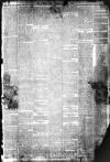 Liverpool Echo Saturday 01 January 1881 Page 3