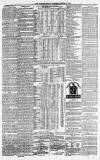 Morpeth Herald Saturday 12 March 1881 Page 7