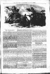 Wellington Journal Thursday 01 June 1854 Page 5