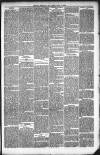 Kendal Mercury Friday 02 July 1880 Page 7