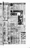 Newcastle Evening Chronicle Wednesday 10 January 1990 Page 17
