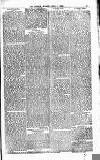 The People Sunday 01 April 1883 Page 11