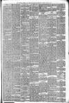 Walsall Observer, and South Staffordshire Chronicle Saturday 08 March 1879 Page 3