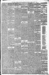 Walsall Observer, and South Staffordshire Chronicle Saturday 15 March 1879 Page 3