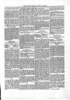 The Irish Racing Book and Sheet Calendar Monday 01 April 1867 Page 3