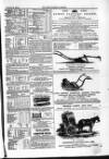 Farmer's Gazette and Journal of Practical Horticulture Saturday 22 October 1864 Page 15
