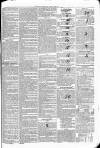 Limerick Chronicle Wednesday 15 June 1836 Page 3
