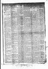 Huddersfield Daily Examiner Monday 13 April 1896 Page 4