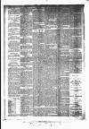Huddersfield Daily Examiner Wednesday 15 April 1896 Page 4