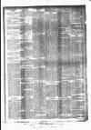 Huddersfield Daily Examiner Thursday 11 June 1896 Page 4
