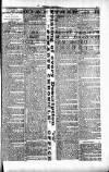 Penarth Chronicle and Cogan Echo Saturday 18 May 1889 Page 3