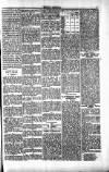 Penarth Chronicle and Cogan Echo Saturday 18 May 1889 Page 5
