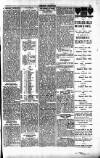 Penarth Chronicle and Cogan Echo Saturday 18 May 1889 Page 7