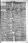 Penarth Chronicle and Cogan Echo Saturday 01 June 1889 Page 3