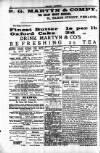 Penarth Chronicle and Cogan Echo Saturday 01 June 1889 Page 4
