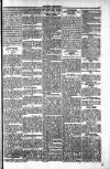 Penarth Chronicle and Cogan Echo Saturday 01 June 1889 Page 5