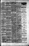 Penarth Chronicle and Cogan Echo Saturday 15 June 1889 Page 7