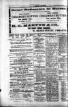Penarth Chronicle and Cogan Echo Saturday 22 June 1889 Page 4