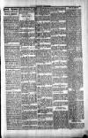 Penarth Chronicle and Cogan Echo Saturday 22 June 1889 Page 5