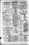 Penarth Chronicle and Cogan Echo Saturday 22 June 1889 Page 8