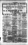 Penarth Chronicle and Cogan Echo Saturday 29 June 1889 Page 4