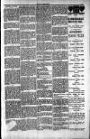 Penarth Chronicle and Cogan Echo Saturday 13 July 1889 Page 7