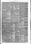Carmarthen Weekly Reporter Friday 12 April 1878 Page 3