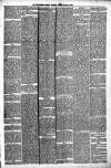 Carmarthen Weekly Reporter Friday 26 March 1886 Page 3