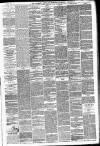 Hackney and Kingsland Gazette Saturday 26 June 1875 Page 3