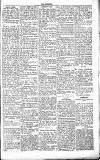 Chelsea News and General Advertiser Saturday 12 June 1869 Page 5