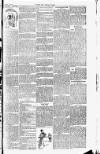 Cricket and Football Field Saturday 19 August 1893 Page 3