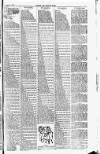 Cricket and Football Field Saturday 19 August 1893 Page 7