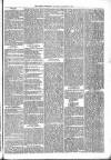 Brecon Reporter and South Wales General Advertiser Saturday 14 January 1865 Page 5