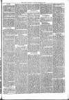 Brecon Reporter and South Wales General Advertiser Saturday 21 January 1865 Page 5