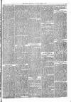 Brecon Reporter and South Wales General Advertiser Saturday 22 April 1865 Page 3