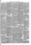 Brecon Reporter and South Wales General Advertiser Saturday 22 April 1865 Page 5