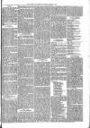 Brecon Reporter and South Wales General Advertiser Saturday 29 April 1865 Page 5