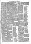 Brecon Reporter and South Wales General Advertiser Saturday 23 December 1865 Page 3