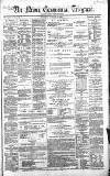 Newry Telegraph Tuesday 19 January 1869 Page 1
