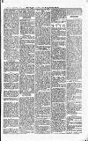Croydon Guardian and Surrey County Gazette Saturday 08 September 1877 Page 5