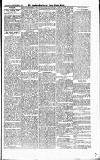 Croydon Guardian and Surrey County Gazette Saturday 15 September 1877 Page 5