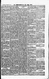 Croydon Guardian and Surrey County Gazette Saturday 03 November 1877 Page 5