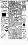 Kentish Independent Friday 01 August 1902 Page 7