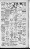 Shoreditch Observer Saturday 04 August 1894 Page 1