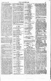 The Sportsman