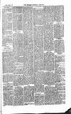 Monmouthshire Beacon Saturday 27 February 1875 Page 3