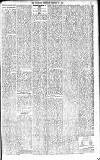Coleraine Chronicle Saturday 12 February 1910 Page 15