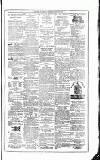 Flag of Ireland Saturday 14 August 1875 Page 7